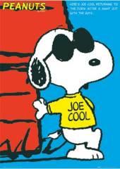 snoopy-joe-cool